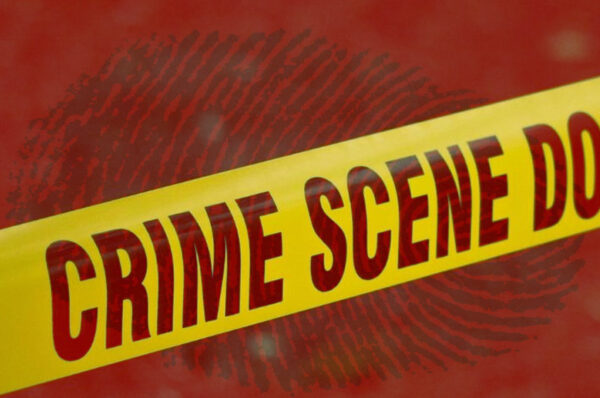 4 Essential Features of Good Crime Novels